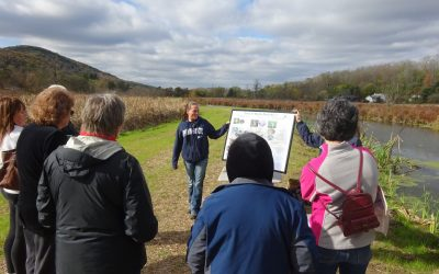 Teaching Others About Water Stewardship