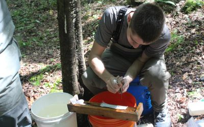 Researching Brook Trout in Pennsylvania